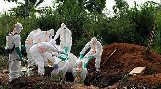 Ebola virüsü nedir? Belirtileri ve tedavi yöntemleri nelerdir?