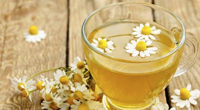 Papatya çayının faydaları neler? Papatya çayı neye iyi gelir?